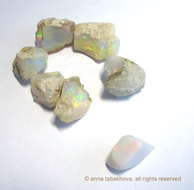 opales-1-anna-tabakhova-P1120253-copyrigh